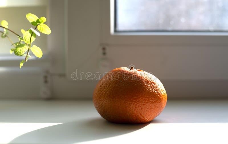 Mandarine sur le rebord de fenêtre images stock