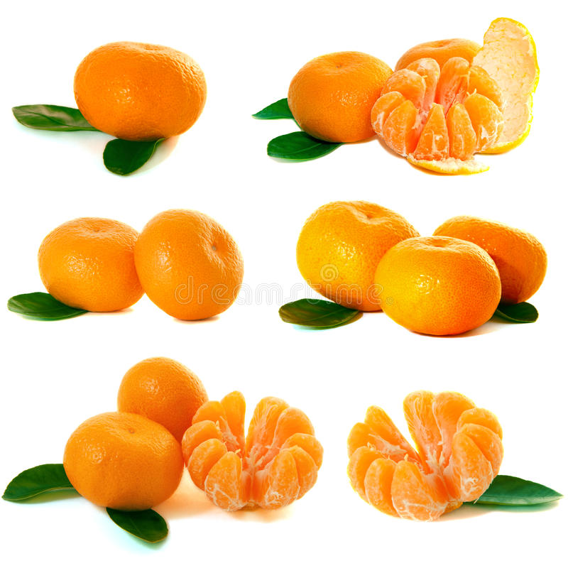 Mandarineansammlung lizenzfreie stockfotos