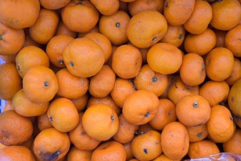 Mandarinen royaltyfri bild
