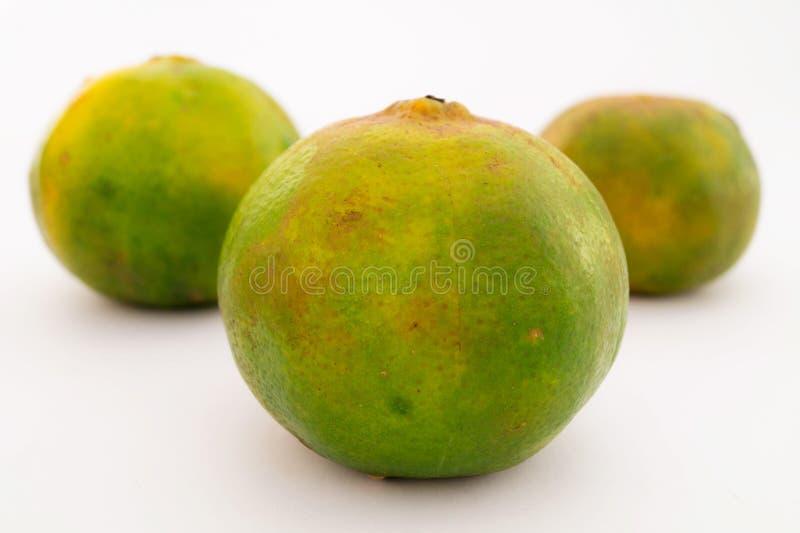 Mandarinen (Orangen) stockbild