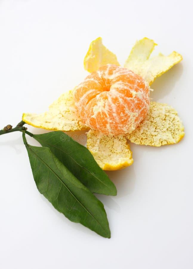 mandarinen skalade arkivfoton