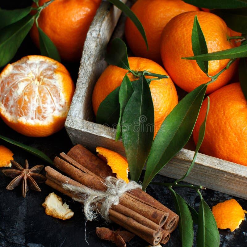 Mandarinen und Gewürze stockbild
