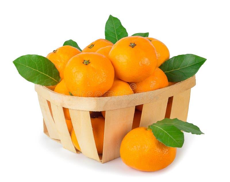 Mandariner i korgen som isoleras på vit arkivfoto