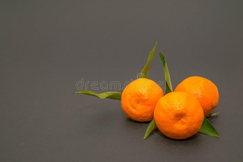 Mandariner mandarin, tangerin! Mycket söt och smaklig citrus fotografering för bildbyråer