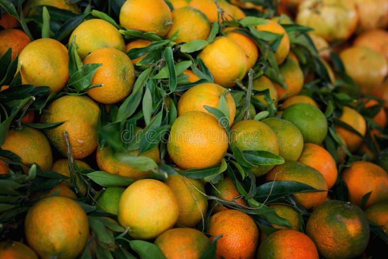 Mandariner med gröna filialer ligger på räknaren i marknaden i Spanien royaltyfri fotografi