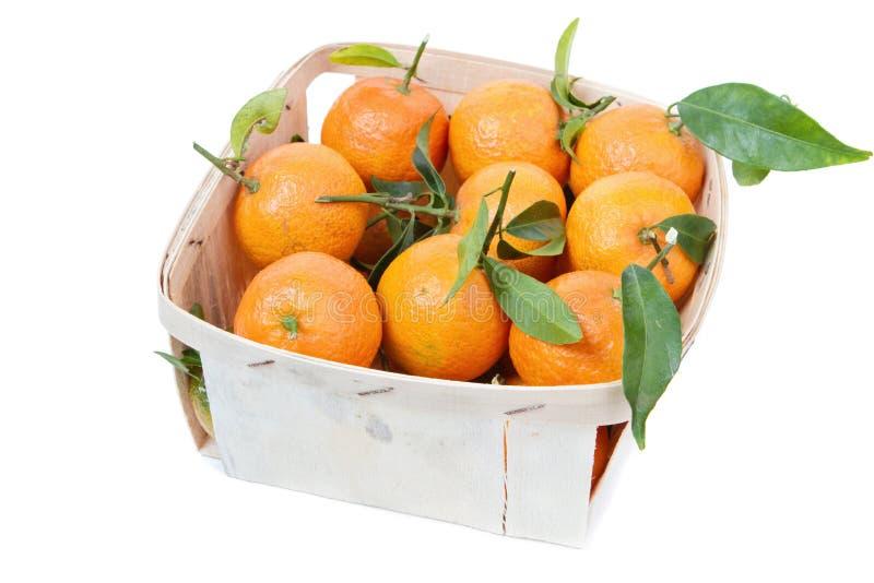 Mandarinerna i lådan royaltyfria foton