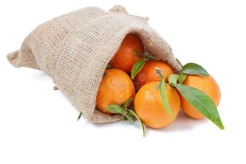Mandarinerna i säcken arkivfoto