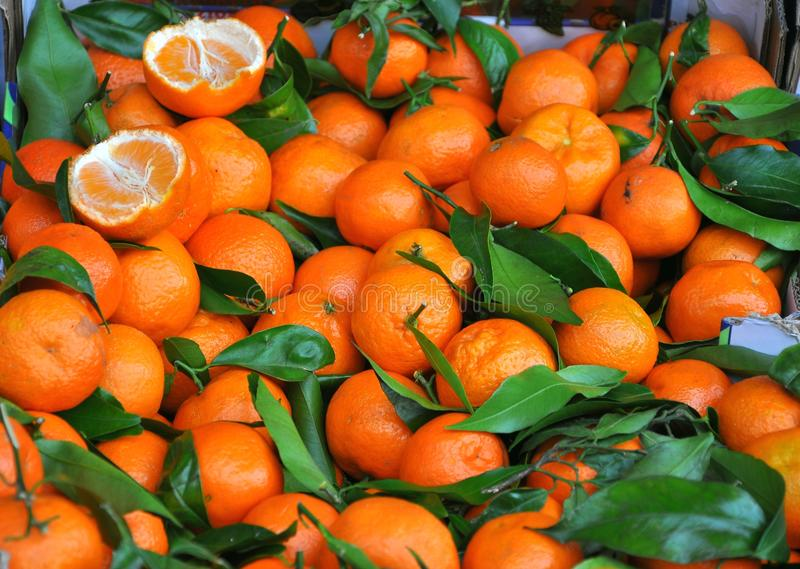 Mandarines royalty-vrije stock foto