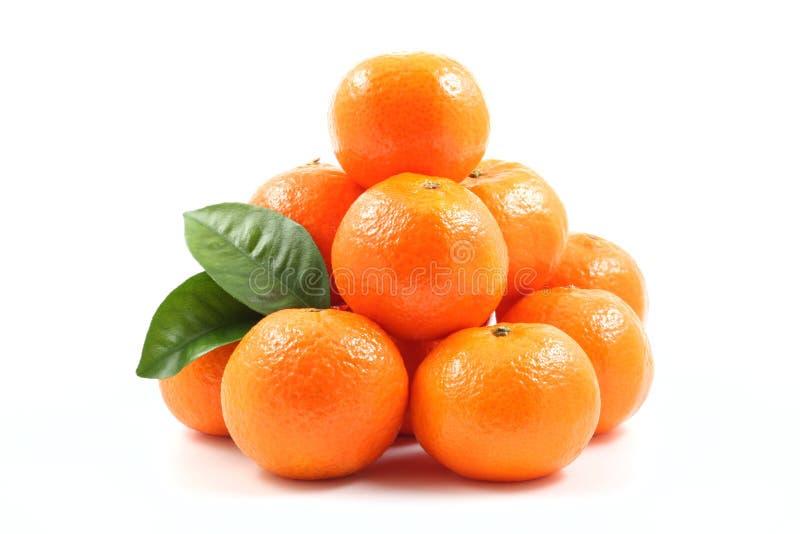 Mandarines images stock