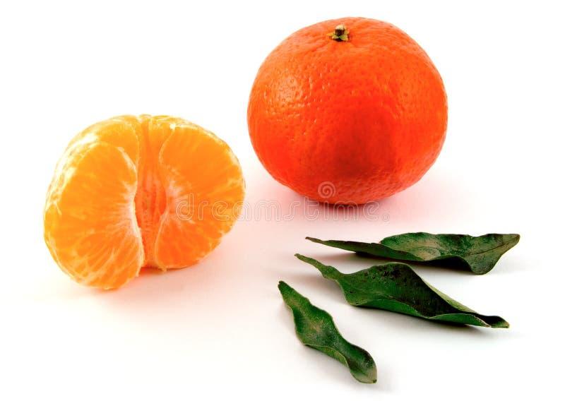 Mandarines image libre de droits