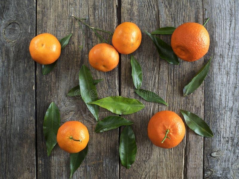 Mandarines avec des feuilles images stock