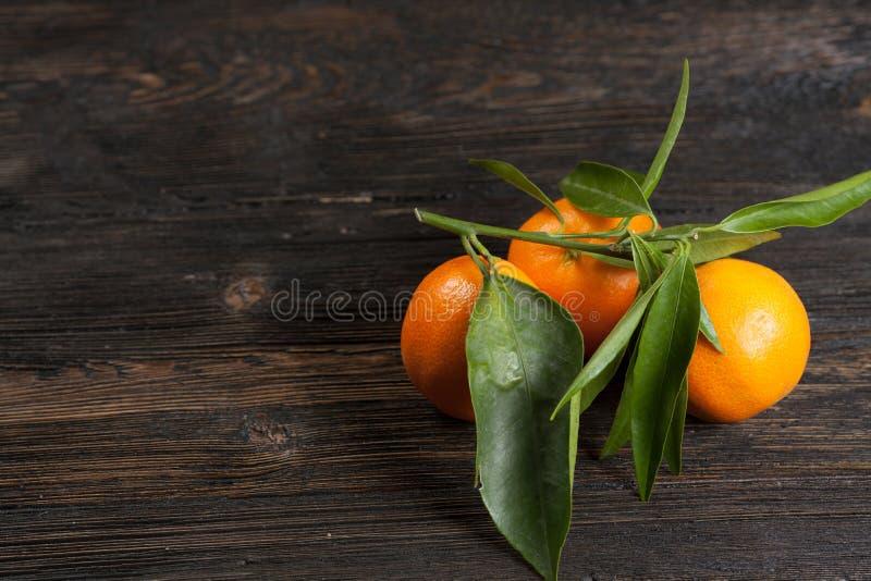 Mandarines avec feuilles photographie stock libre de droits