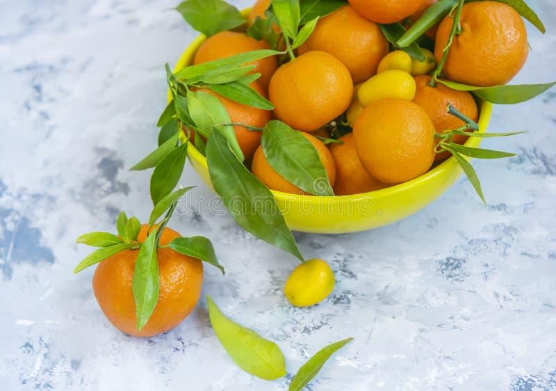Mandarines avec les feuilles vertes sur un fond clair Agrume appétissant lumineux photographie stock libre de droits