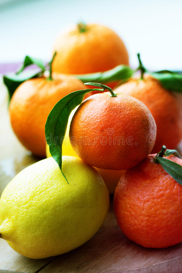 Mandarines et citrons mélangé des fruits frais aux feuilles photos stock