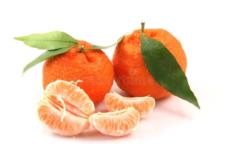Mandarines et parts photographie stock libre de droits