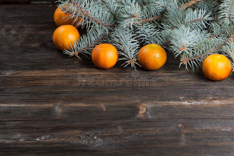 Mandarines et sapin Noël photos libres de droits