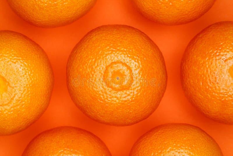 Mandarines, mandarines fraîches sur un fond orange, concept minimalistic, monochrome Mod?le de fruit image stock