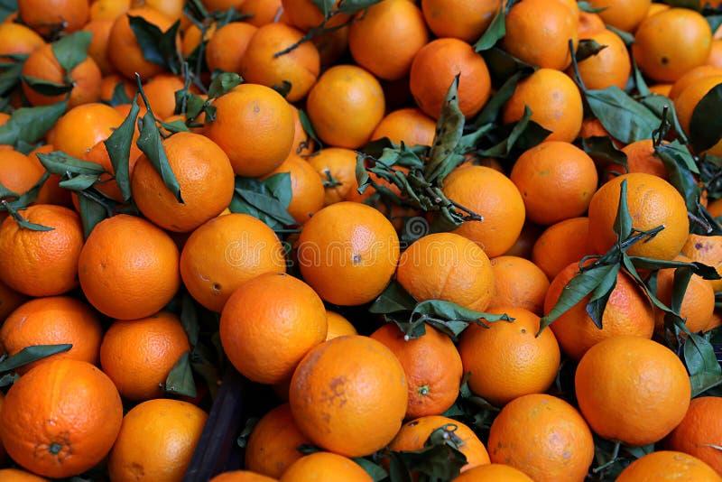 Mandarines lumineuses mûres photo libre de droits
