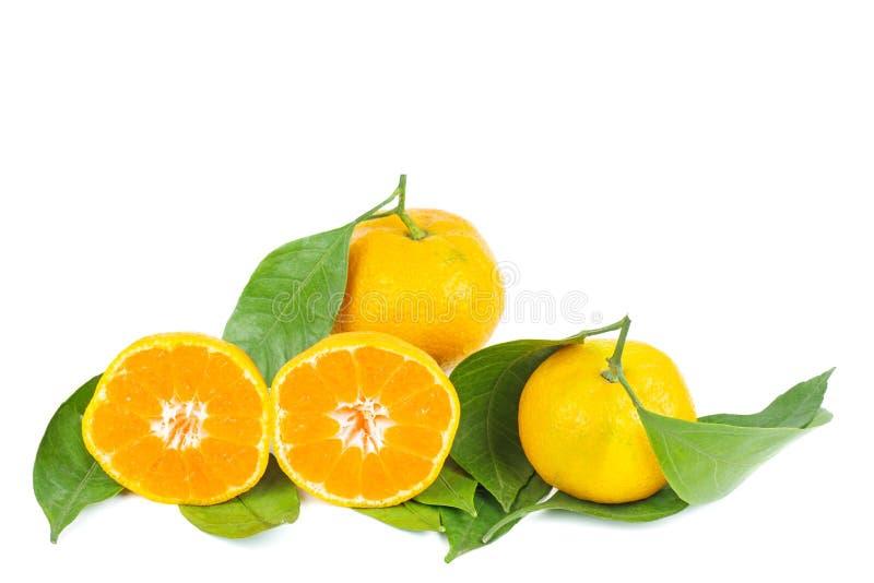 Mandarines, mandarijn of clementine met bladeren royalty-vrije stock afbeeldingen
