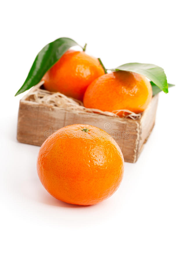 Mandarines oranges photo stock