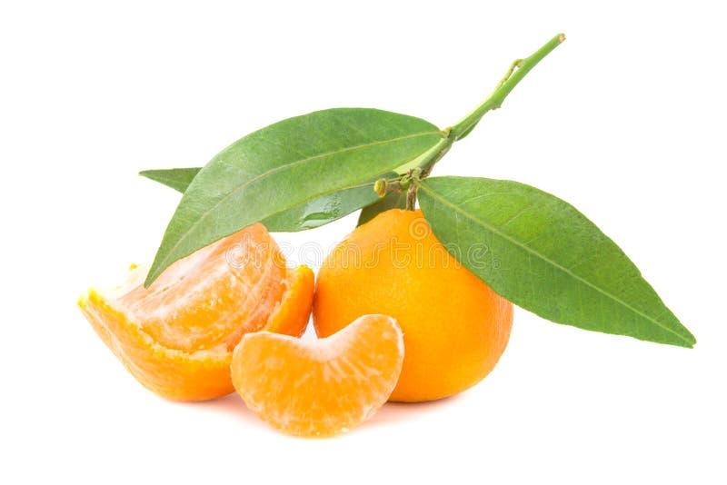Mandarines oranges avec les feuilles vertes photos libres de droits