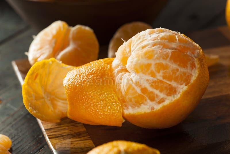 Mandarines organiques crues fraîches photo libre de droits