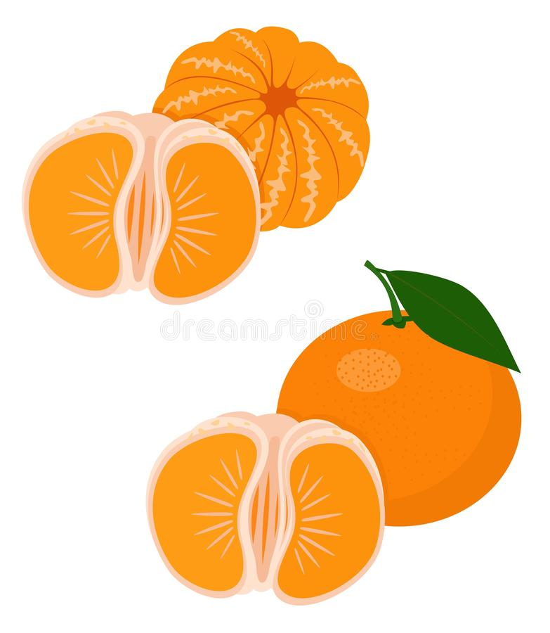Mandarines, tangerine, clementine with leaves isolated on white background. Citrus fruit. Funny cartoon character royalty free illustration