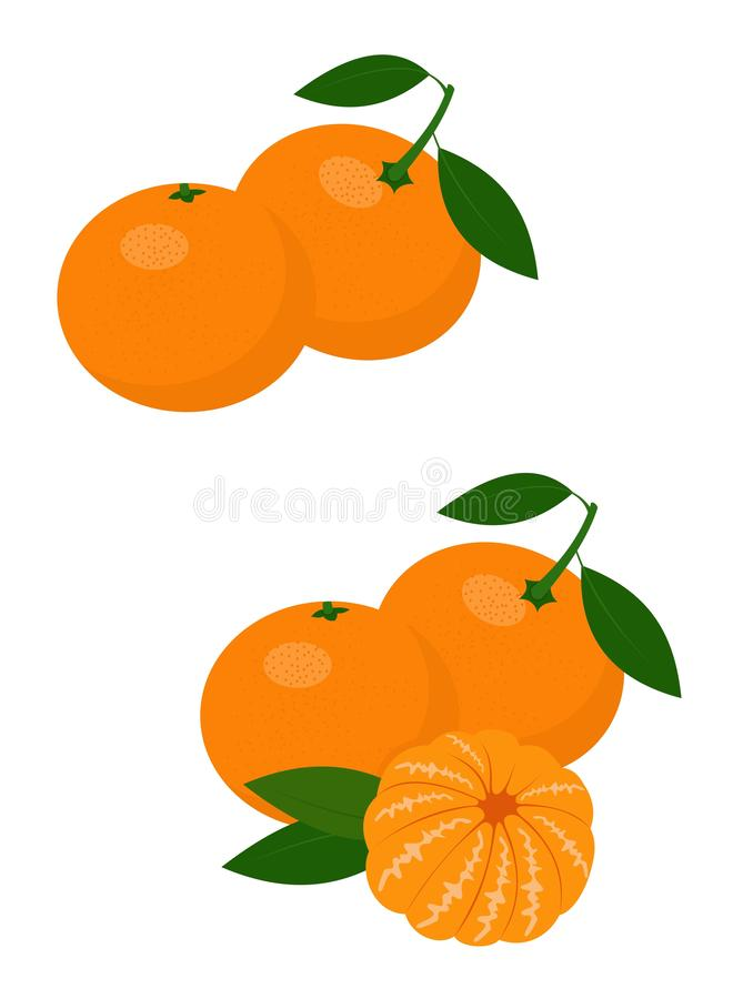 Mandarines, tangerine, clementine with leaves isolated on white background. Citrus fruit. Raster Illustration stock illustration