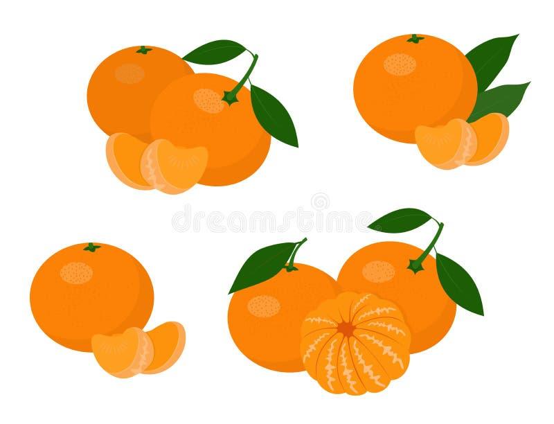 Mandarines, tangerine, clementine with leaves isolated on white background. Citrus fruit. Raster Illustration set royalty free illustration