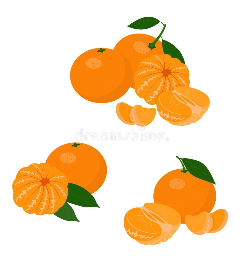 Mandarines, tangerine, clementine with leaves isolated on white background. Citrus fruit. Vector Illustration set vector illustration