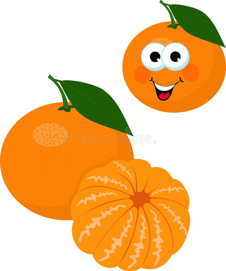 Mandarin, tangerine, clementine with leaves isolated on white background. Funny cartoon character. Raster Illustration vector illustration