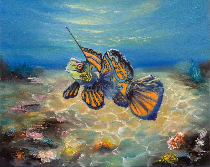 Mandarinfish con las malas hierbas fotografía de archivo