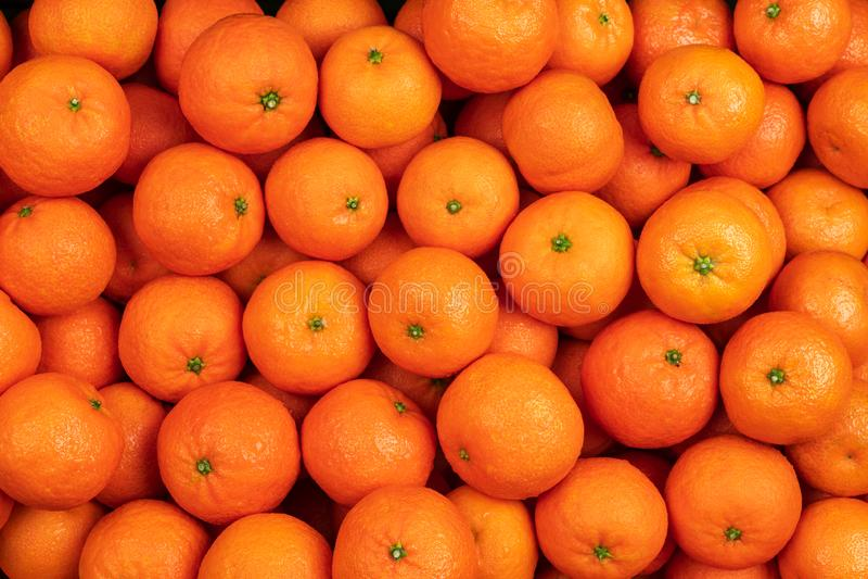 mandarinfrukter eller tangerin med sidor som bakgrund arkivfoto