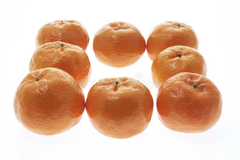 Download Mandarini immagine stock. Immagine di isolato, celebrazione - 7318169