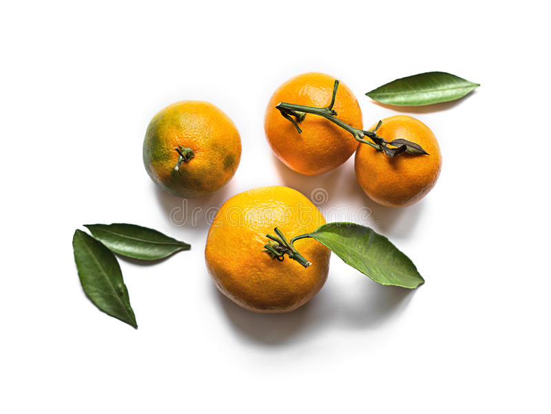 Mandarini arancio freschi con le foglie isolate su bianco fotografie stock