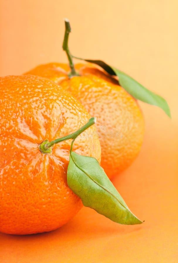 Mandarini con i fogli immagini stock libere da diritti