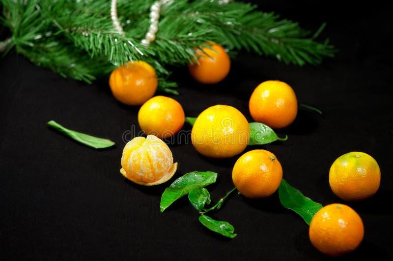 Mandarini di Natale fotografie stock