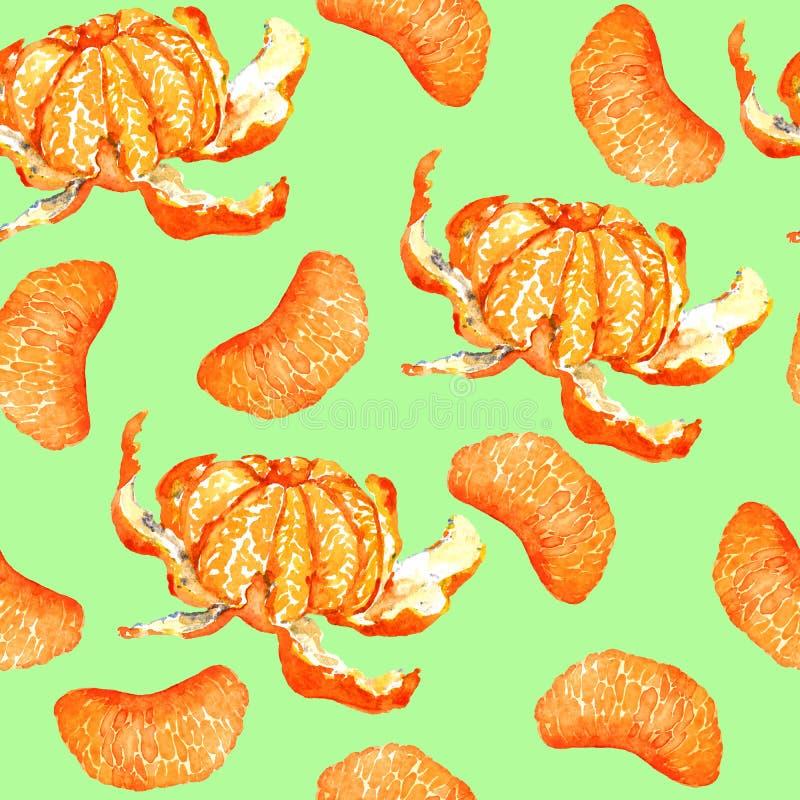 Mandarini e fette sbucciati della sezione su fondo verde molle royalty illustrazione gratis