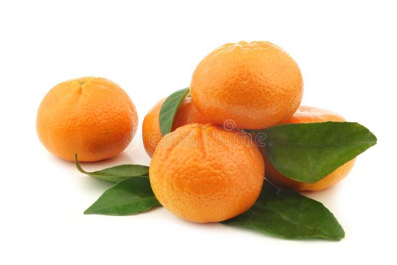Mandarini freschi ed alcune foglie fotografia stock