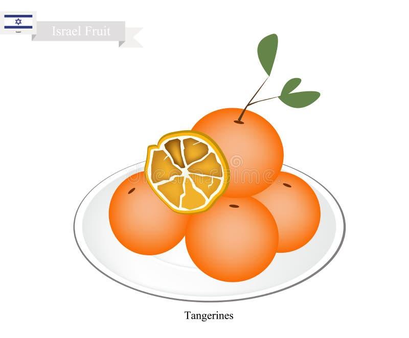 Mandarini o mandarino, frutta famosa in Israele royalty illustrazione gratis