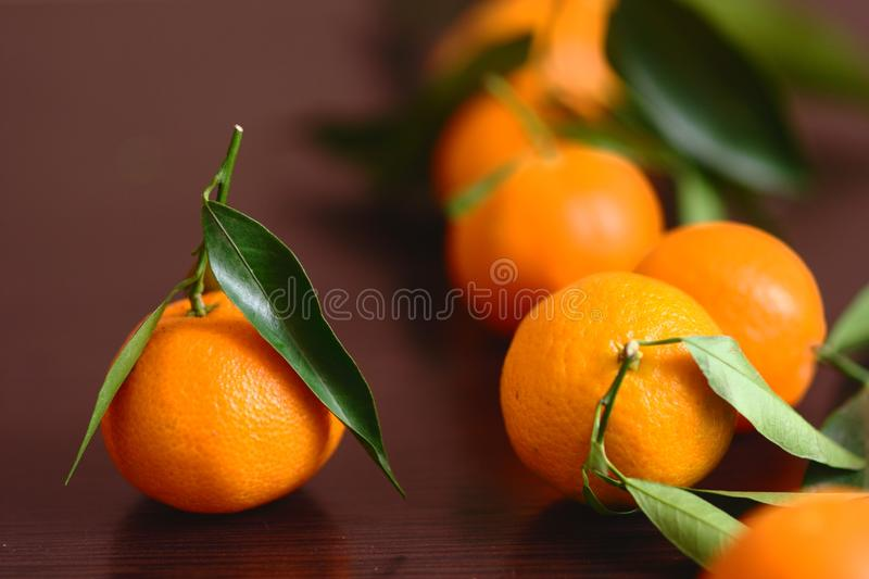 Mandarino con le foglie fotografia stock