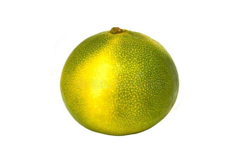 Mandarino giallo verde isolato immagine stock libera da diritti