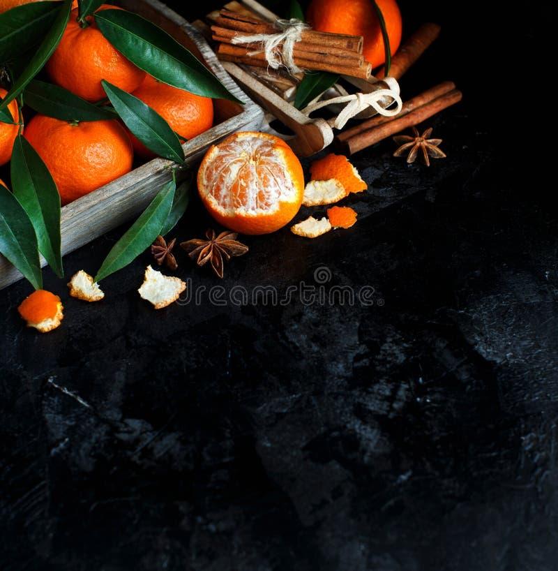 Mandarins en kruiden stock foto's