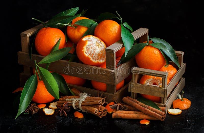 Mandarins en kruiden royalty-vrije stock afbeelding