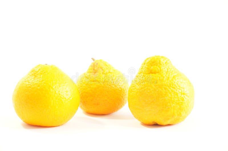 Mandarins. Ripe orange mandarins isolated on white background stock photography