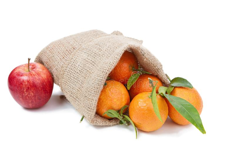 The mandarins in the sack stock image