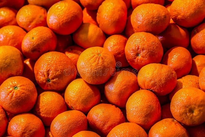 Mandaryn pomarańcze owoc setu stosu wzoru owoc bazy projekta rynku szorstka wielka taca obrazy stock