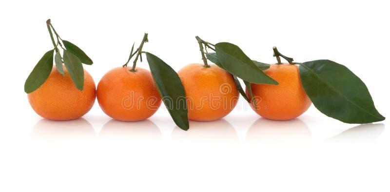 mandarynki owocowa pomarańcze zdjęcia stock
