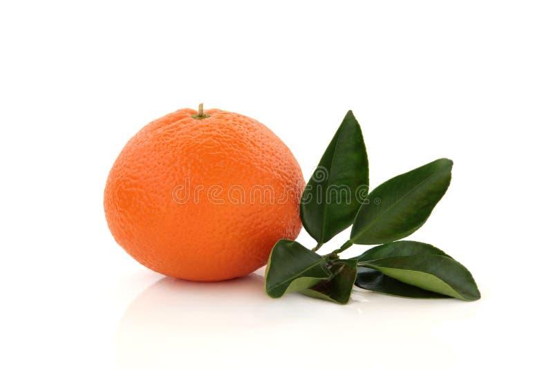 mandarynki pomarańcze obrazy stock