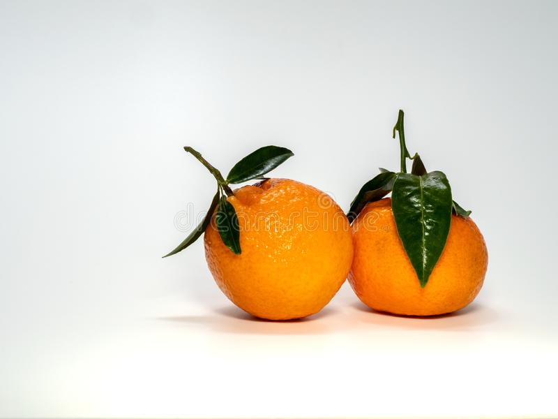0624 mandarynu z trzonem i liśćmi małymi, fotografia stock